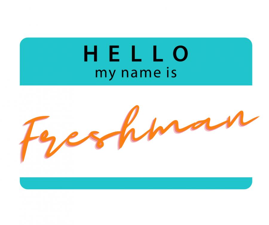 Meet+the+Freshmen